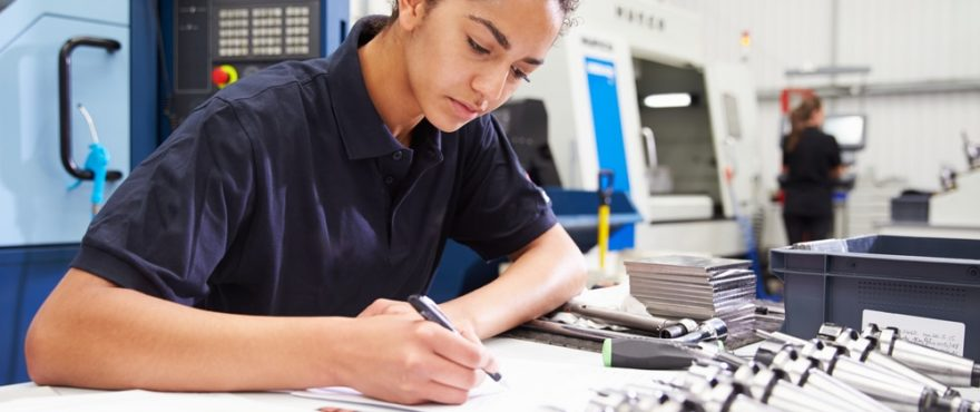 what are apprenticeship standards
